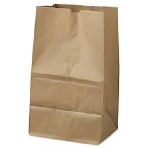 Heavy Paper Bags